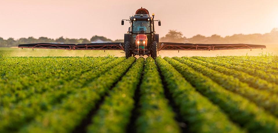 EXPORTACIONES AGROPECUARIAS A EU ROMPERÁN RÉCORD EN 2021